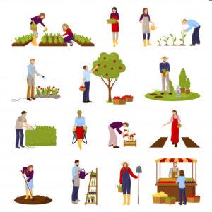 Cartoon image of gardening activity