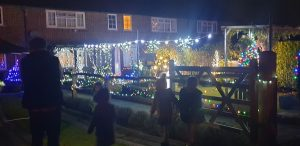 a garden lit by Christmas lights